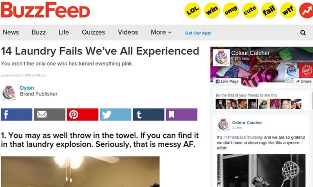 Aperçu de l'article incriminé.