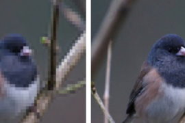 image pixelisee