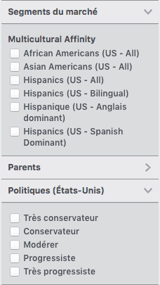 option ciblage publicitaire Facebook origines ethnique et sensibilités politiques