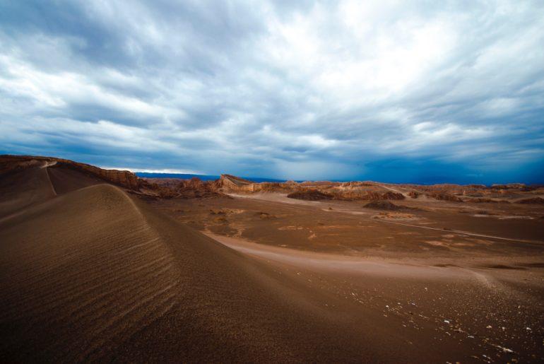 Des scientifiques américains travaillent sur des moyens d'utiliser le biomimétisme pour améliorer le quotidien des personnes vivant dans des milieux arides