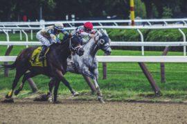 Une IA crée des noms de chevaux de courses